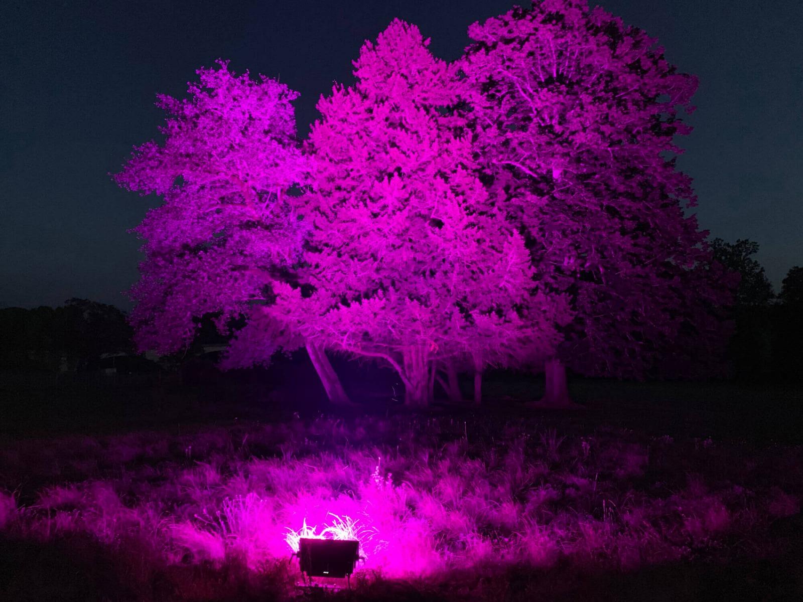 Location de projecteur extérieur étanche lyon
